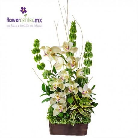 Jardín de Orquídeas