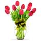 10 Tulipanes  en Jarròn