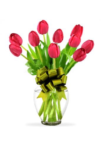10 Tulipanes Rojos  en Jarròn