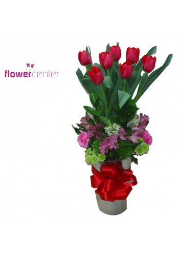 Tulipanes Lovers