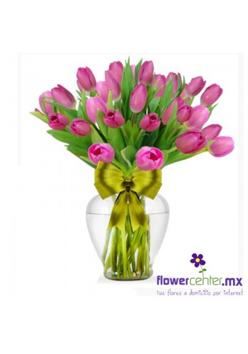 30 Tulips Magicos