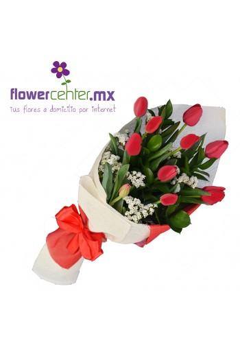 10 Tulipanes Rojos