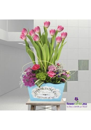 Tulipanes de Amor
