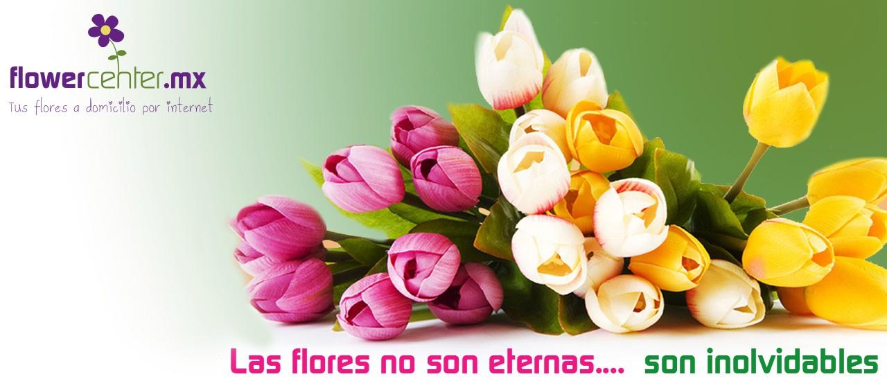 Las Flores no son eternas... Son inolvidables.